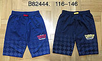 Трикотажные шорты для мальчиков Grace оптом, 116-146 pp., фото 1