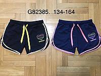 Шорты для девочек оптом, Grace, 134-164 см,  № G82385, фото 1