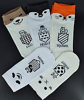 Жіночі шкарпетки з малюнком