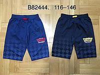 Шорты для мальчика оптом, Grace, 116-146 см,  № B82444, фото 1
