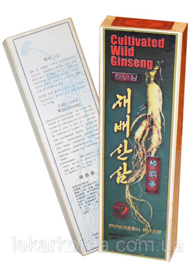 Cultivated wild genseng, дикий корень женьшень, купить корень из кореи, фото