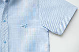 Сорочка для хлопчика з коротким рукавом SmileTime в смужку на кнопках, блакитна, фото 4