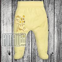 Тонкие ползунки штанишки р 68 3 4 5 месяцев детские с широкой резинкой для малышей ткань КУЛИР 3166 Жёлтый