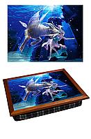 Поднос с подушкой Зодиак Козерог (380-9711320)