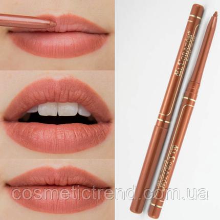 Карандаш для губ контурный механический Perfect Lips №432 Bronze El Corazon, фото 2