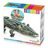 ✅Детский надувной плотик для катания Intex 57551 «Алигатор», 170 х 86 см, фото 3
