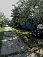 Отдых на Черном море, Коблево