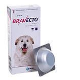 BRAVECTO Бравекто Таблетки от блох и клещей для собак весом от 40 до 56 кг, 1 шт, фото 2