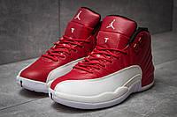 Мужские кроссовки Air Jordan 12 Retro