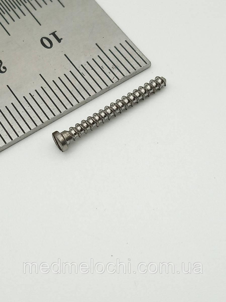 Мікрогвинт D = 2,0 мм, 19мм, титан, прямий шліц