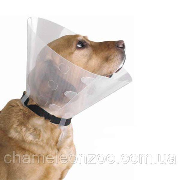 Захисний пластиковий комір для собак розмір №4 S 12-14 см, шия 31-38 см Dog Extreme