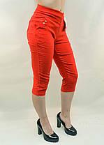 Бриджи женские стрейч яркие в больших размерах от L до 6XL (Польша) - хлопок, фото 3