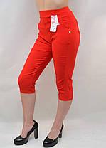 Бриджи женские стрейч яркие в больших размерах от L до 6XL (Польша) - хлопок Капри батал, фото 2