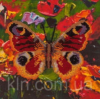 Набір для вишивання бісером FLF-016 Метелик-1 20*20 Чарівна країна якісний