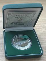 Марена дніпровська Срібна монета 10 гривень унція срібла 31,1 грам, фото 3