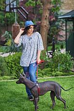 Костюм женский джинсы + блузка, фото 2