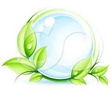 GREEN ORGANIC — биологические моющие средства будущего поколения - Грин-Виза