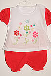 Комплект на дівчинку 6,12,18 міс арт 75453 Туреччина рожевий,кораловий., фото 5