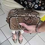 Женская бежевая сумочка на цепочке из питона, фото 3