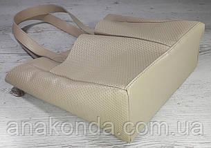 532-2 Сумка женская натуральная кожа на подкладке и молнии, бежевая  Экрю Молочная Светлая кожаная сумка, фото 3