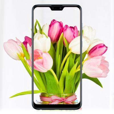 Мобильный телефон ASUS ZenFone Max Pro (M2) ZB631KL 6/64 GB Cosmic Titanium (ZB631KL Cosmic Titanium)