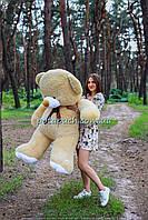 Большой плюшевый мишка, медведь Томми 180см мокко