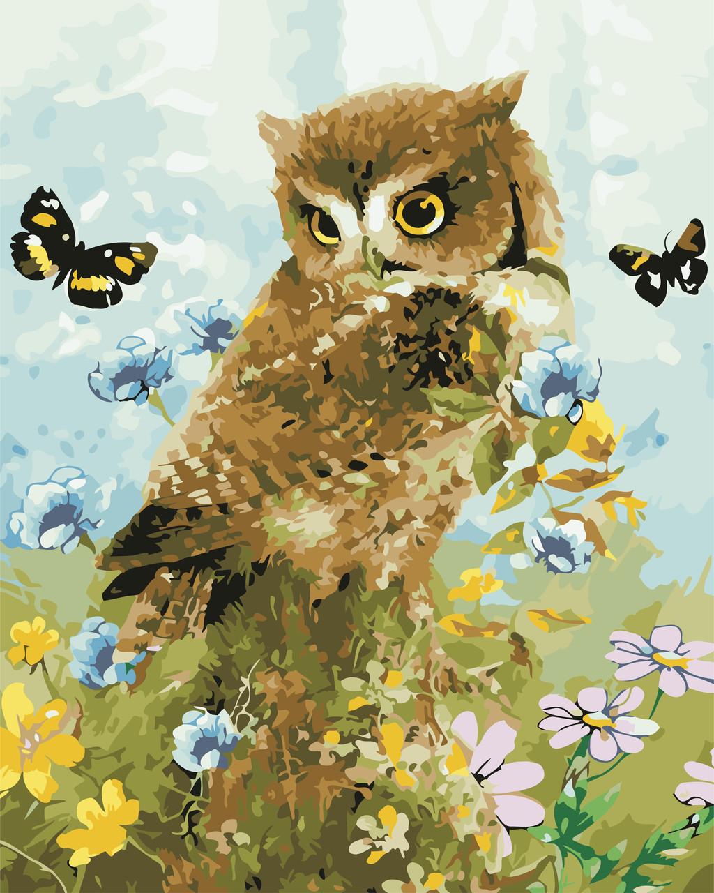 """Картина по номерам """"Совенок и бабочки"""" 40*50см: продажа ..."""