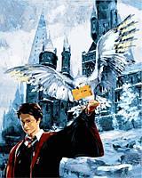Картина по номерам Гарри Поттер Письмо из Хогвартса (VP1118) 40 х 50 см DIY Babylon