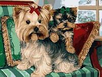 Картины по номерам 30×40 см. Йоркширские терьеры