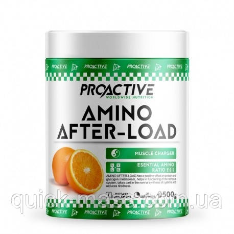 Амінокислоти Pro Active Amino After Load 500g
