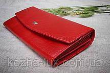 Кошелек женский кожаный красный Braun Buffel без металла, натуральная кожа, фото 3