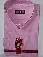 6d2d5678f311669 Рубашка мужская с коротким рукавом Bendu vk-0009 розовая в полоску  классическая