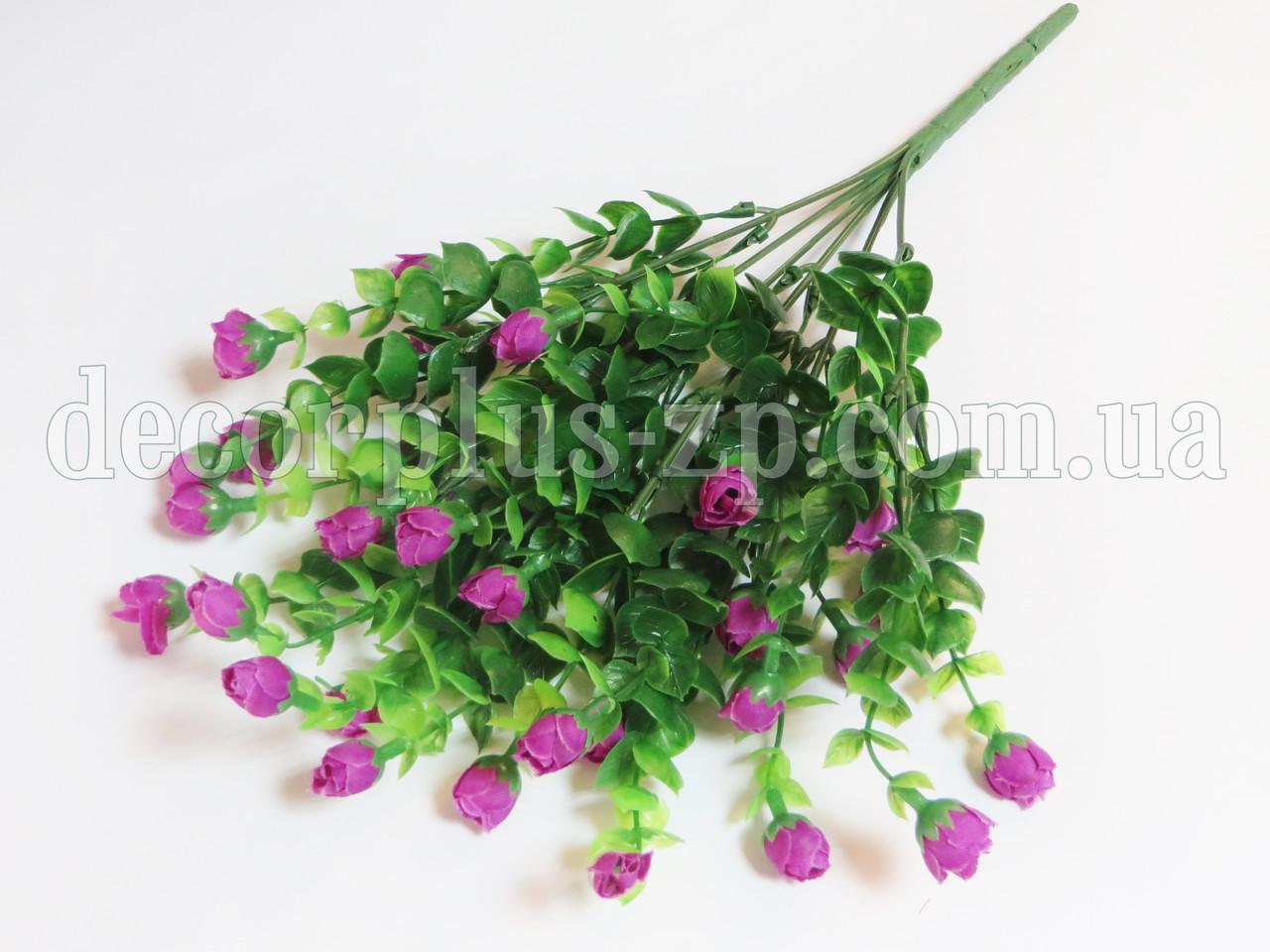 Куст, цветущей зелени с бутонами, сиреневый