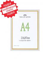 Фоторамка пластиковая цвет белый+золото 21*30(А4).  Рамка для диплома.