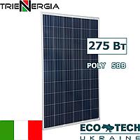 Солнечная батарея Trienergia COE‐275P60L поликристалл, фото 1