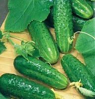 Семена на вес Огурец Маша F1