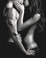 Картина по номерам - Пристрасне побачення