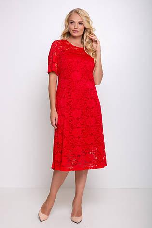 Нарядное большое платье красное гипюровое Ивона, фото 2