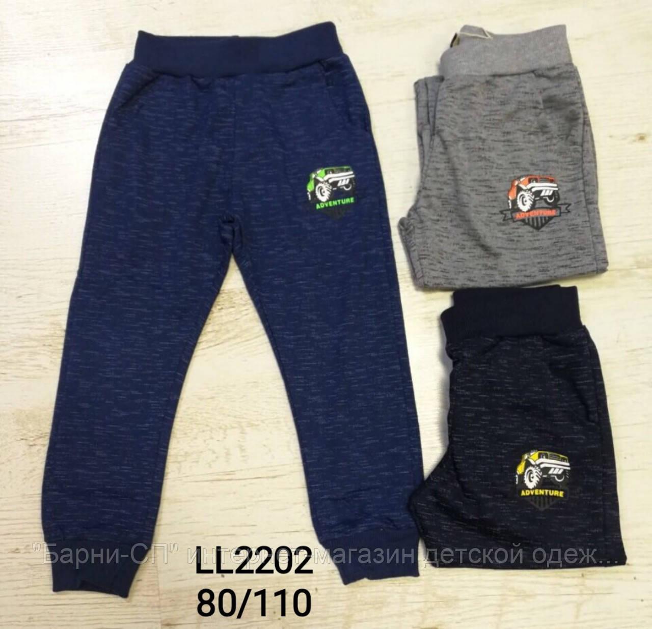 b8a4426ba96a Трикотажные спортивные брюки для мальчиков оптом, Sincere 80-110 рр ...