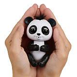 Fingerlings Glitter Panda  Интерактивная Фингерлингс Бейби Панда Дрю Оригинал., фото 4