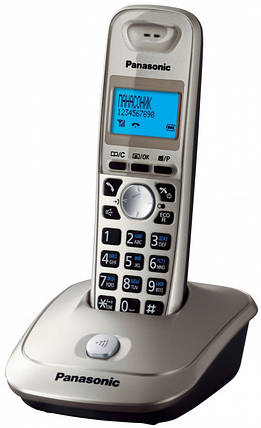 Радиотелефон Panasonic KX-TG2511UAN (Платинум) АОН, фото 2