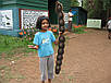 Энтада семена, фото 4