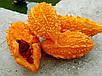 Семена Момордика, фото 2