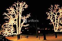 Праздничное освещение деревьев, украшение уличных елок, новогоднее оформление парков