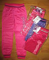 Спортивные брюки еластик для девочекActive Sports  110-116 рр.