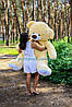 Великий плюшевий ведмедик, ведмідь Томмі 180см крем