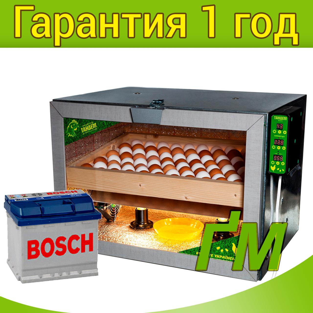 Инкубатор Тандем-80 с резервным питанием
