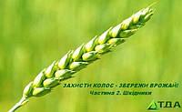 Захисти колос – збережи врожай! Частина 2.