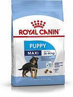АКЦИЯ 18 КГ Royal Сanin Maxi Puppy сухой корм для щенков с 2-15 месяцев 15+3кг