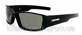 Солнцезащитные очки JULBO CARTEL (Артикул: 347)